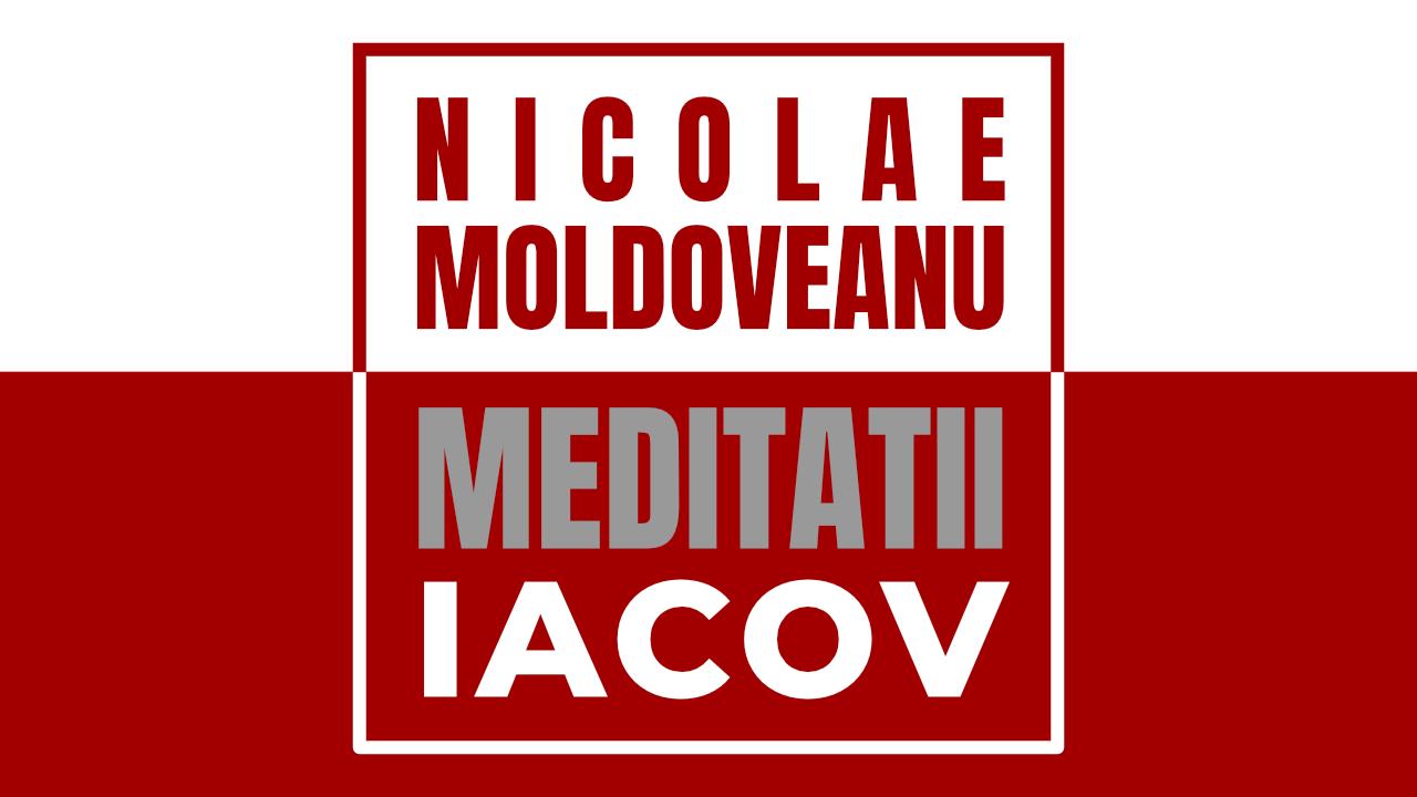 Nicola Müntefering Biografie